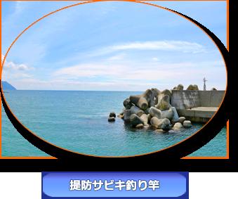 堤防サビキ釣り竿
